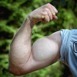 上腕二頭筋を鍛えるオススメメニュー